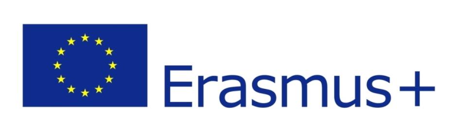 eu_flag-erasmus+_vect_pos
